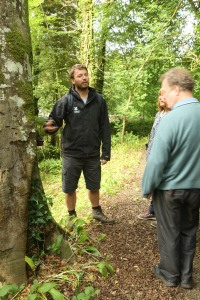 Chris Oliver points out the bracket fungus that can seriously weaken mature beech trees.