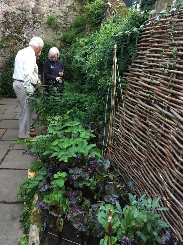 IMG_7694 Mair shows the TMH garden to PNTA Sept 19 1200